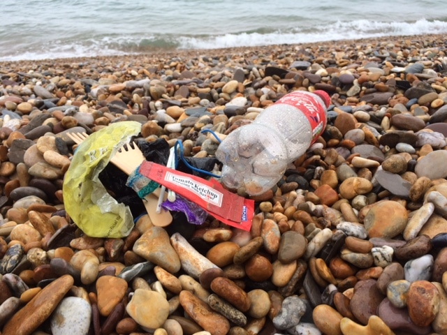 Torcross 2 Minute Beach Clean