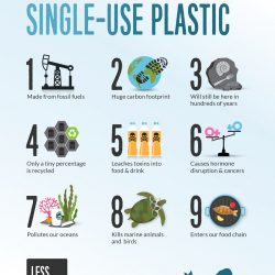 9 reasons to refuse single-use plastic posters and postcards
