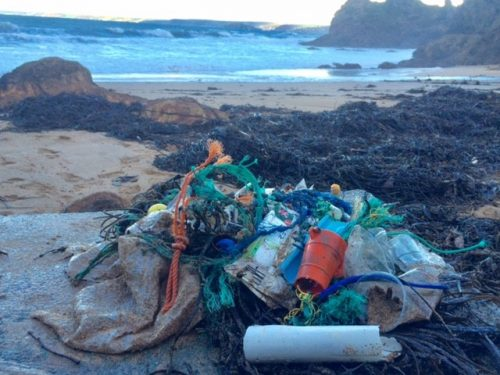 plastic washed up on beach at Hope Cove